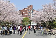 Du học Đại học, Cao đẳng Hàn Quốc